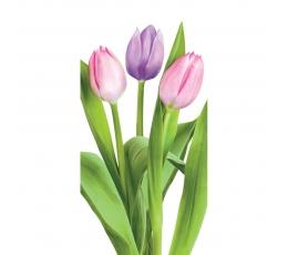 "Kabatslakatiņi ""Tulpes"" (10 gab)"
