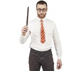 Burvju komplekts (kaklasaite, brilles, zizlis)