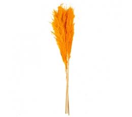 Dekoratīvās smilgas, oranžas (3 gab./80 cm)