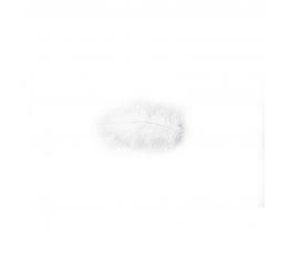 Dekoratīvās spalvas, baltas (10 g./5-10 cm)