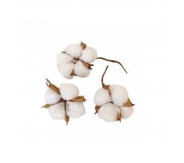 Dekoratīvi kokvilnas zariņi (9 gab.)