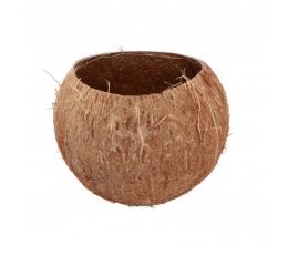 """Dekoratīvs trauks """"Kokosrieksts"""" (13 x 10 cm)"""