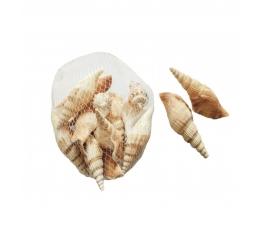 Gliemežvāki (150 g)