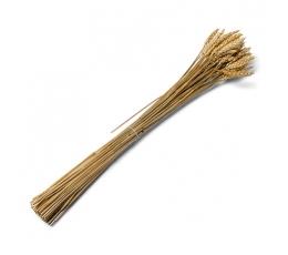 Sauso kviešu pušķis (70 gab./60 cm)